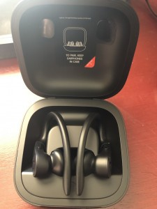 Powerbeats Pro inside case